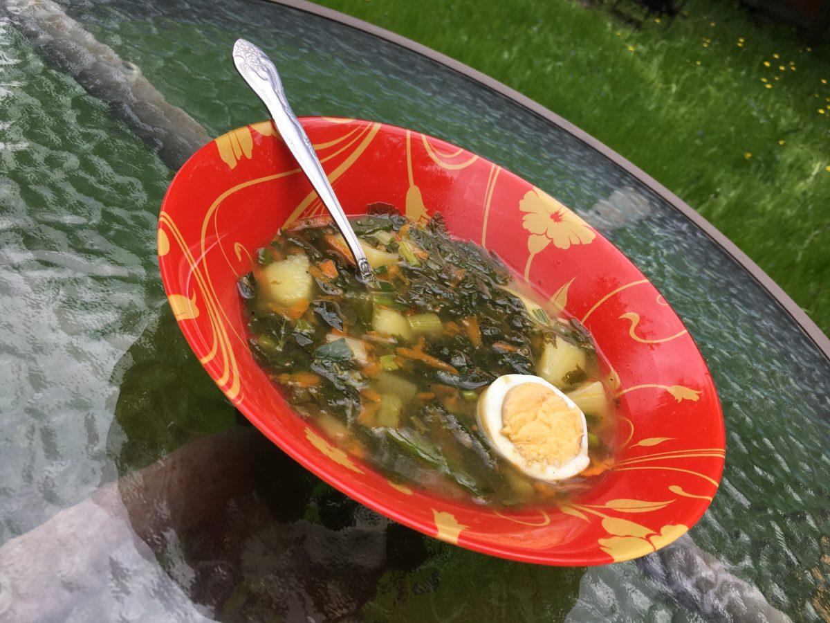 Суп из крапивы с яйцом. Дешево и просто готовится!
